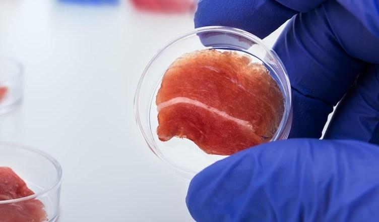 Carne cultivada em laboratório é carne de verdade